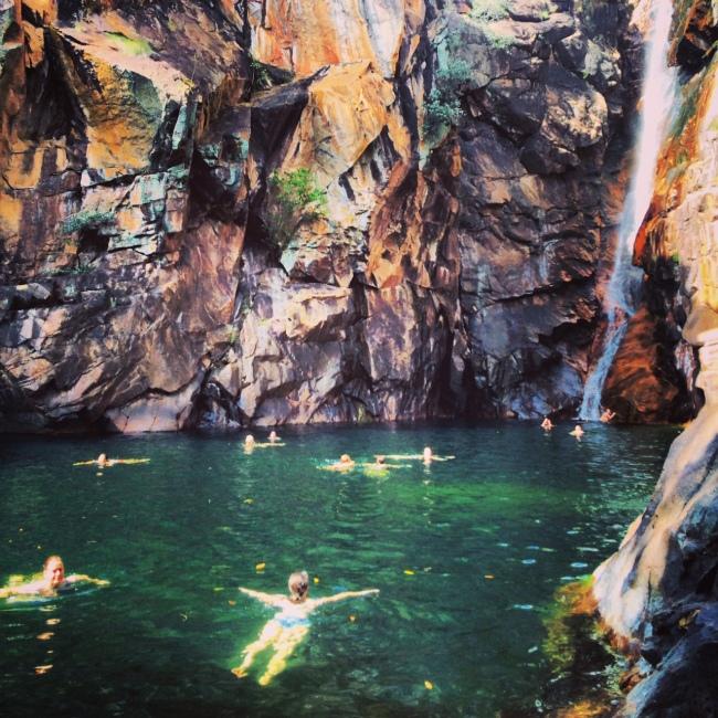kakadu swimming