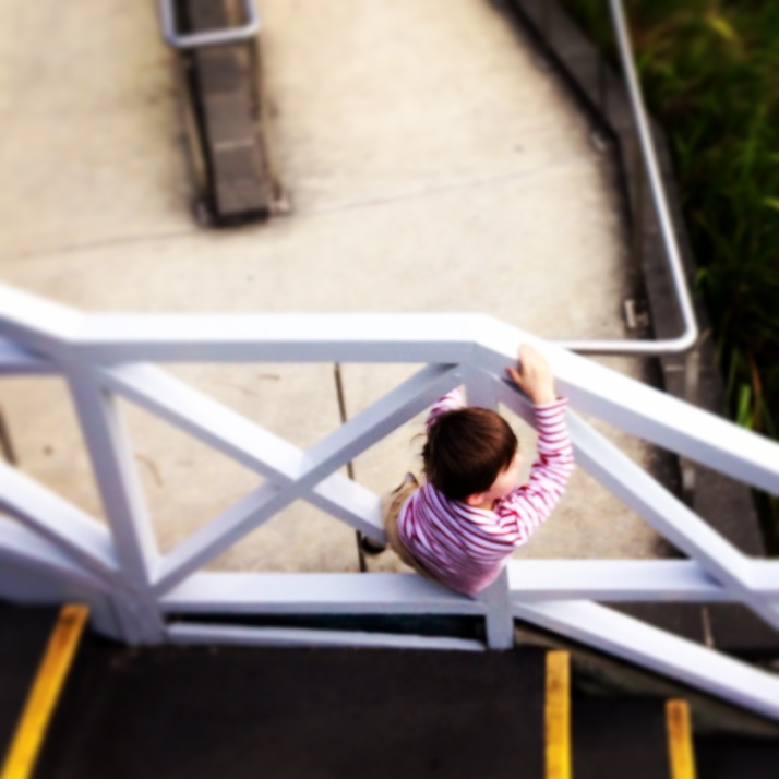 A Inner West toddler climbs the wall